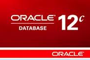Oracle Database 12c: Export by View