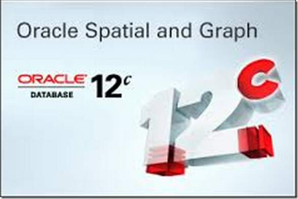 Spatial License Incompliancy While Using Oracle Locator Amis