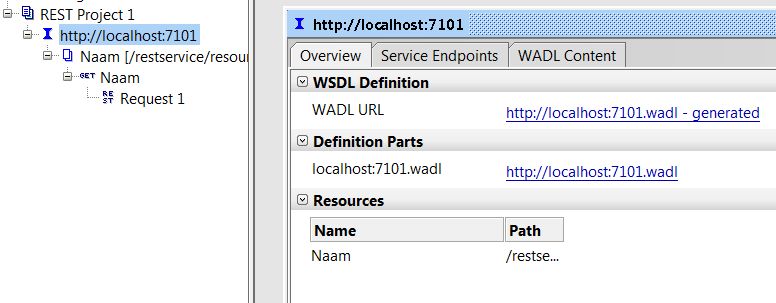 SOAP UI generates a WADL for you based on the defined REST service