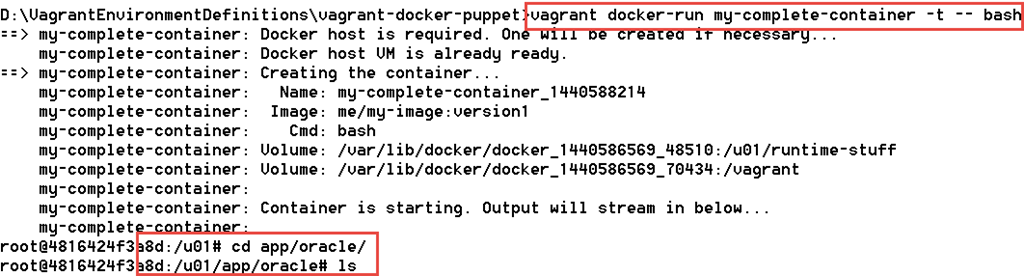 Vagrant and Docker followed by Puppet to provision complex