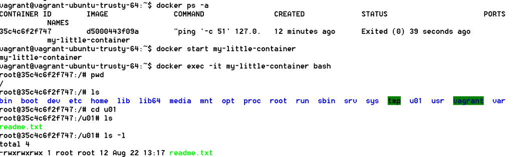 First steps with provisioning of Docker containers using Vagrant as
