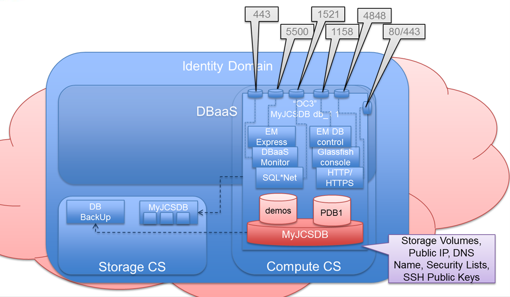 Granting access to the DBaaS instance - enabling network