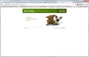 2016-05-04 12_47_53-PetClinic 1.0 __ a Spring Framework demonstration