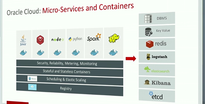 Application Container Cloud and Multi Tenant Services