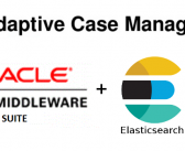 Elasticsearch and Oracle ACM data