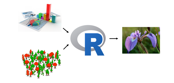 Machine learning: Getting started with random forests in R
