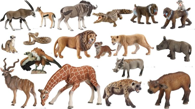 Welcome to the Zoo of programming languages inspired by the Animal Kingdom