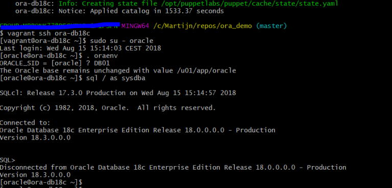 Getting started with Enterprise Modules' ora_profile to install Oracle 18c