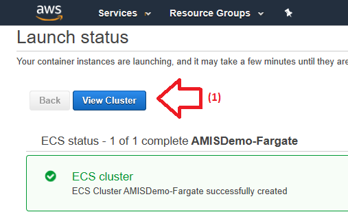 Running a container in the AWS cloud using Fargate - AMIS