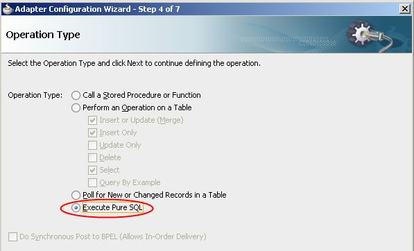 Execute Pure SQL Option